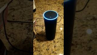 Ask Alexa about the CIA- It will shut down