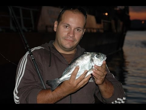 match (inglese) fishing for sea bream