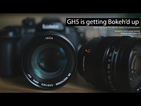GH5 is getting bokeh'd up - Quick AF test with the 12mm 1.4