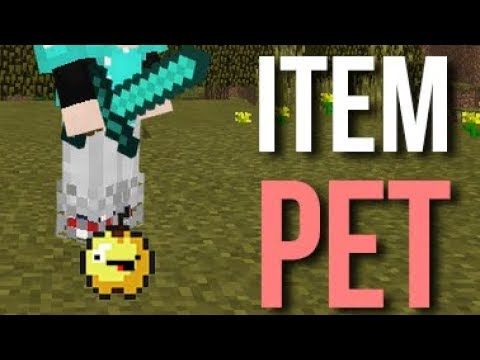How to GET YOUR OWN SUPER CUTE ITEM PET! - Minecraft (No addon / mod)
