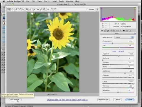 Camera Raw in Photoshop and Elements. Adobe Camera Raw Plugin.