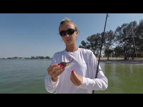 How To Hook Pass Crabs For Catching Tarpon And Permit