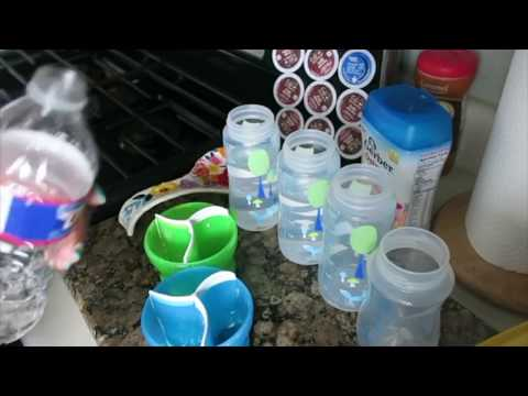 How To Prepare a  Baby  Bottle / Formula / Quick and Easy
