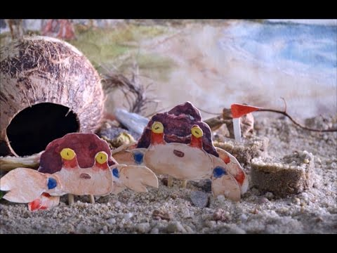 Playtime with Hershie the Hermit Crab