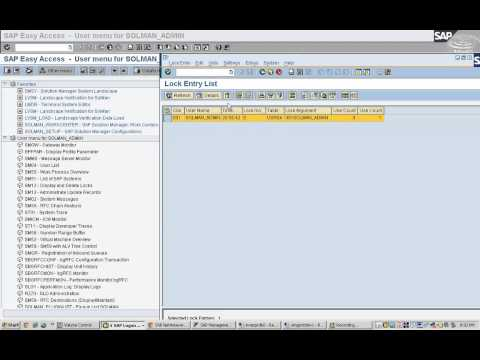 SAP Lock Management