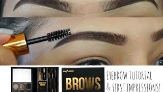 PROFUSION BROWS The NEW Trendsetter Brow Eyebrow Tutorial Talk Through   First Impressions