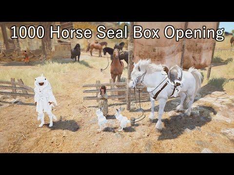 BDO - 1000 Horse Seal Box opening