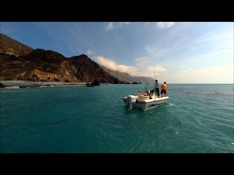 Calico Bass Fishing with DOA Swimbaits at Catalina Island California