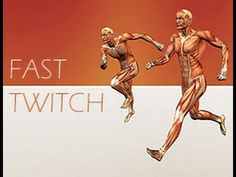Best way to build FAST TWITCH MUSCLE FIBRE