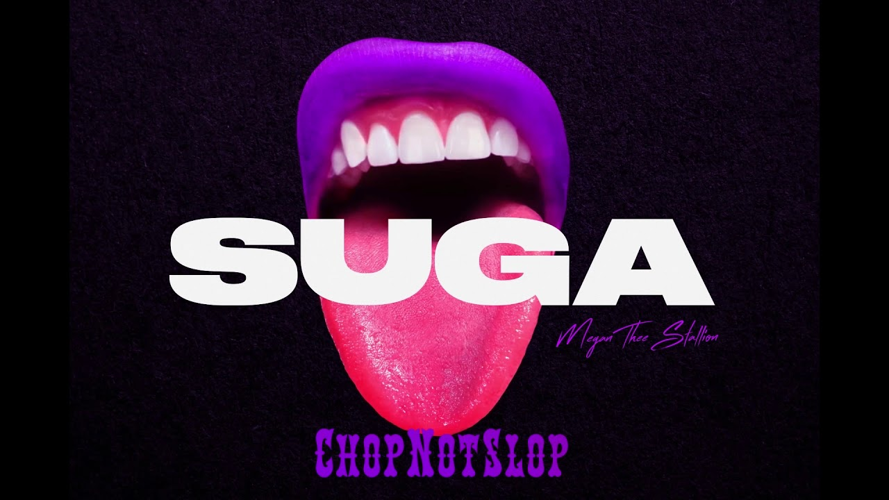 Megan Thee Stallion - B.I.T.C.H. (Chopnotslop Remix)