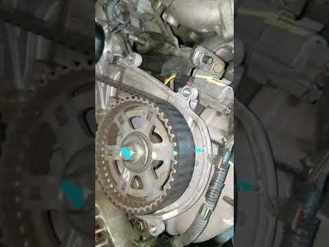 Honda accord 3.0 v6 timing belt
