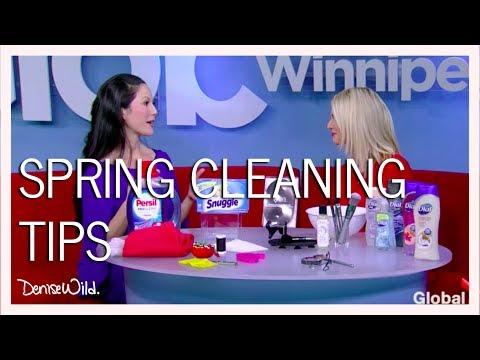 Spring Cleaning Tips (Global News Morning)