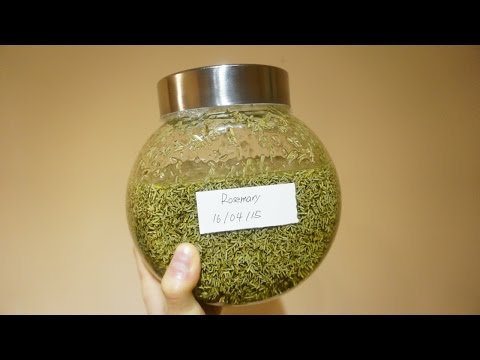 How To Make Homemade Rosemary Infused Oil - DIY DIY Tutorial - Guidecentral