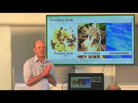 Industry forum on potato disease and soil health - TIA Associate Professor Calum Wilson