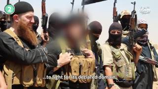 The fall of Islamic State   The Economist