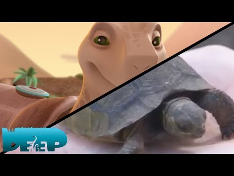 Xxx Mp4 The Deep Real Life Adventures Giant Tortoises NEKTON 3gp Sex