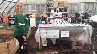 John P. Stevens Teacher Laura Holborow shows off the Greenhouse