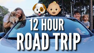 12 Hour Road Trip with a Toddler & Puppy   Teen Mom Vlog