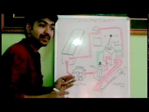 Basic Hydraulic circuit (Must Watch). ✔