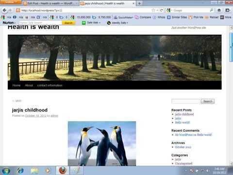 How to make website tutorial bangla 2