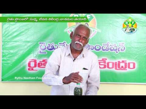 Bio Fertilisers&Pesticides - Trichodermaviridi
