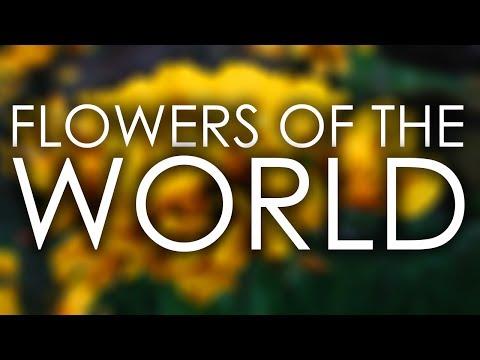 Flowers Of The World | Exploramum