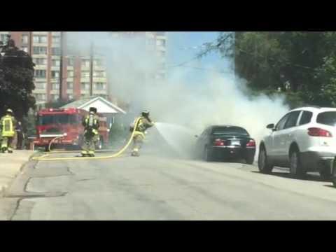 Jaguar on Fire