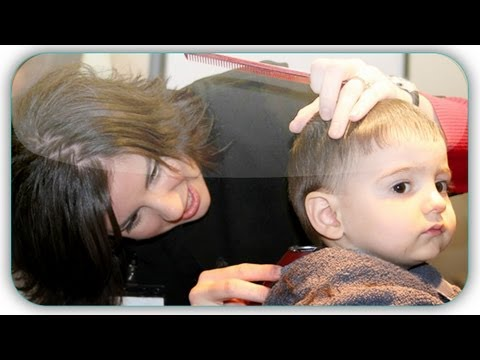 The Baby Book - Tips and Tricks to Cutting Your Child's Hair (The Baby Book)