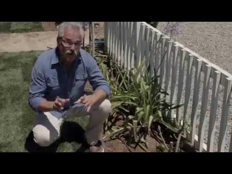 Converting Sprinklers to Drip in Flower beds