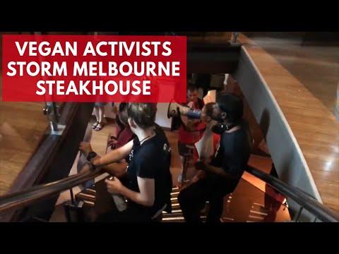 Vegan activists storm Melbourne steakhouse