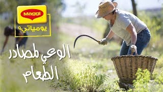 MAGGI Diaries: What's the story behind your food? يوميات ماجي: الوعي لمصادر الطعام