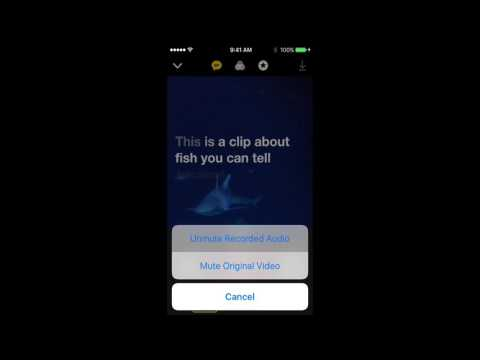 Apple Clips App Select Audio Track