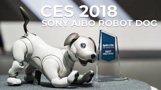 CES 2018 - Sony