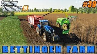 Buying chickens, start corn silage harvest | Farmer weekdays in