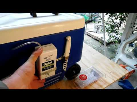 DIY INEXPENSIVE COOLER LIVEWELL