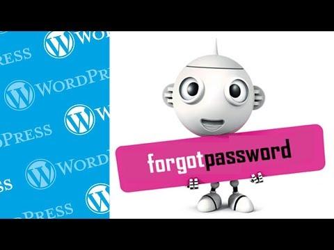 Recover Lost WordPress Admin Password via PHPmyAdmin (cPanel Change/Reset)