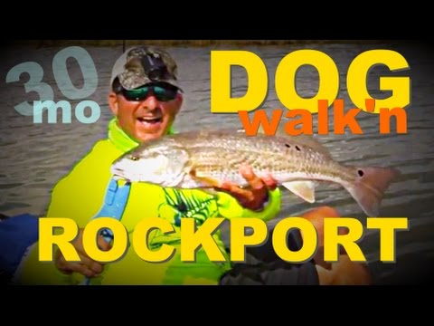 Redfish & Trout Topwater
