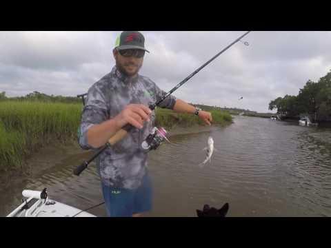 Catching redfish and black drum!