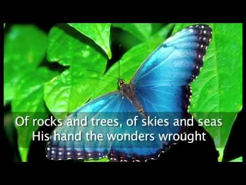This is My Father's World ~ Amy Grant ~ lyric video