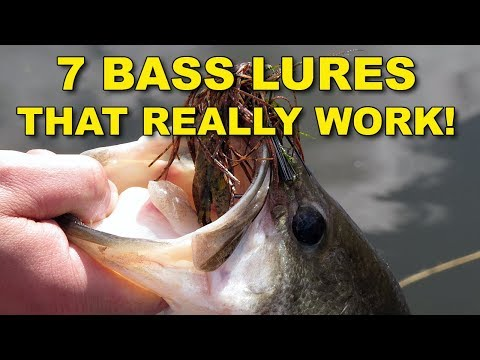 7 Best Bass Lures That Work Year Round | Bass Fishing