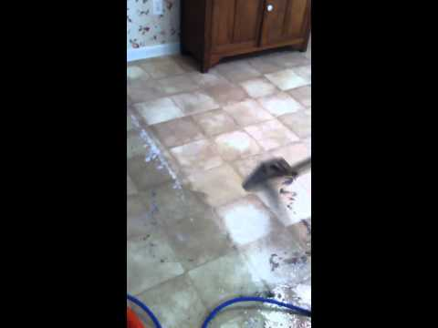 Floor cleaning|eagle carpet care