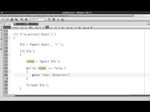 Lesson 11 part 1 - PHP - File Systems - fopen function, Reading Single Char using fgetc