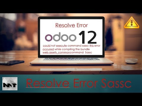 How To Fix Error Could Not Execute Command Sassc on Odoo 12