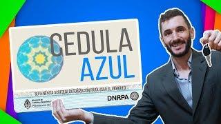 CEDULA AZUL 🚨 autorización para MANEJAR un auto