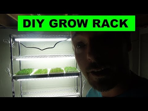 Low Cost Indoor DIY Microgreens Setup