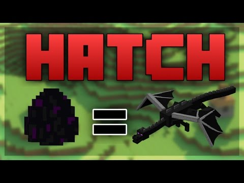Minecraft PS4 HOW TO HATCH THE ENDER DRAGON EGG
