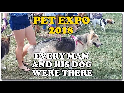 Every Man And His Dogs Were There - Pet Expo 2018