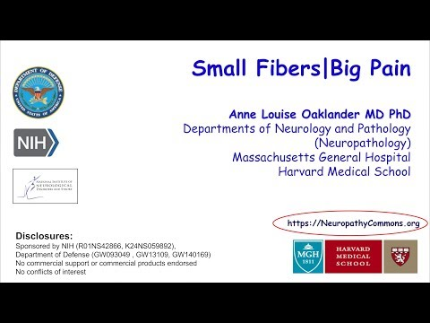 Anne Louise Oaklander | Small Fibers, Big Pain || Radcliffe Institute