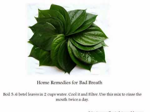 Natural remedies for bad breath, freshness in mouth