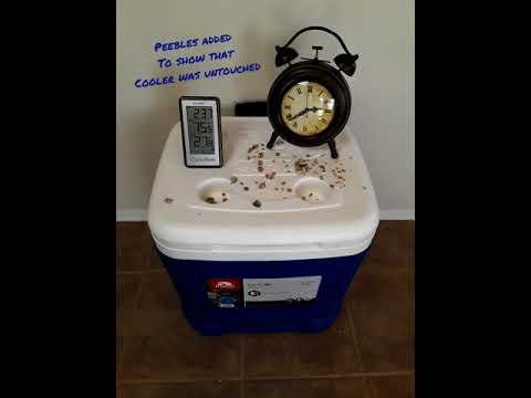 Cooler Shock freeze
